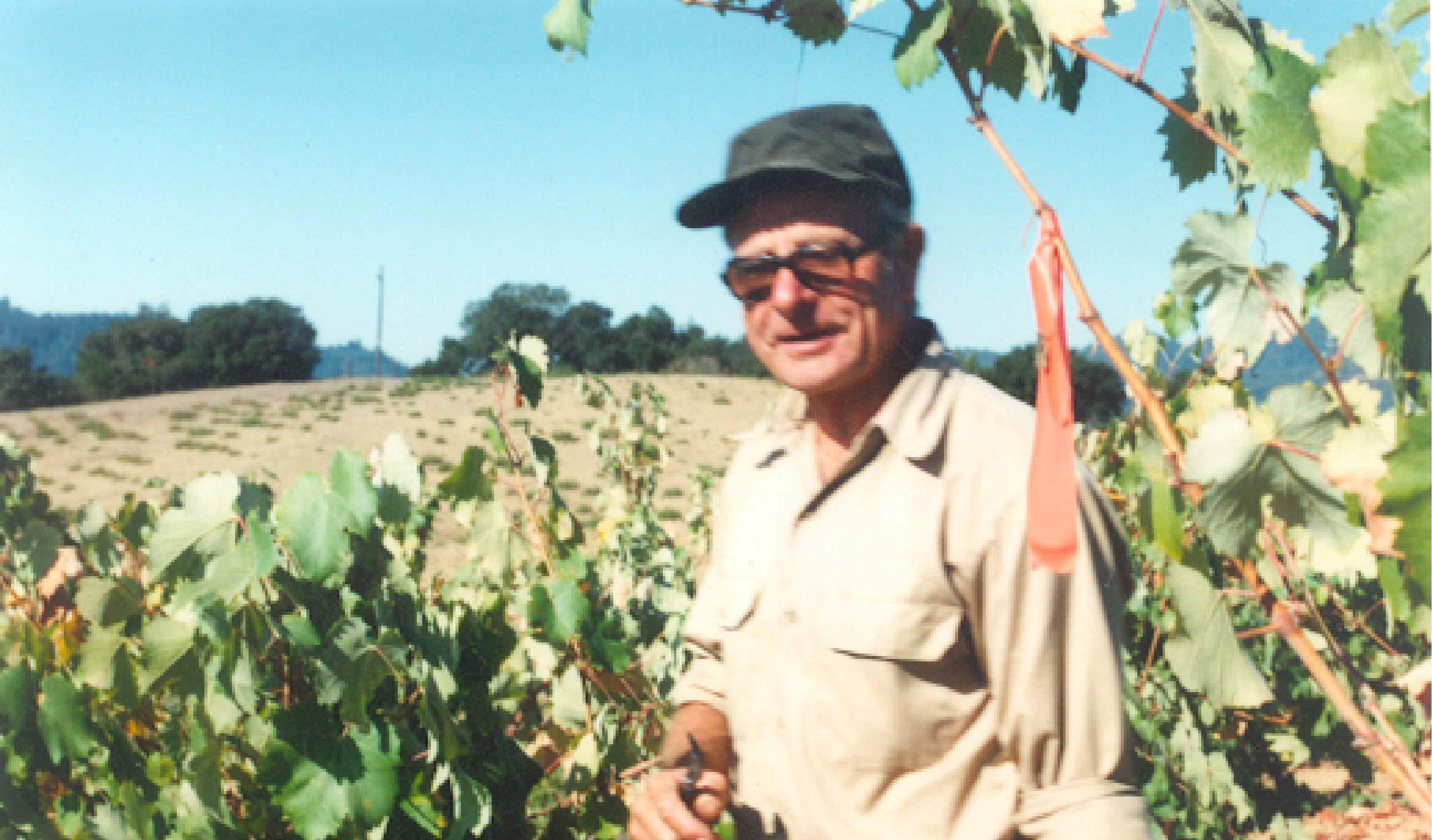 Chester Brandlin checking on the vineyard.
